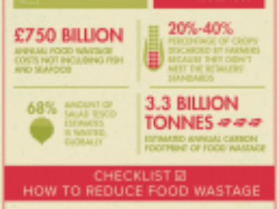the-cost-of-food-wastage